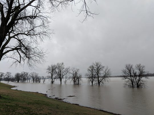 Low-lying areas of Mississippi River Greenbelt Park on Mud Island in Memphis are engulfed in water on Saturday, Feb. 23, 2019, as the Mississippi River continued to swell.
