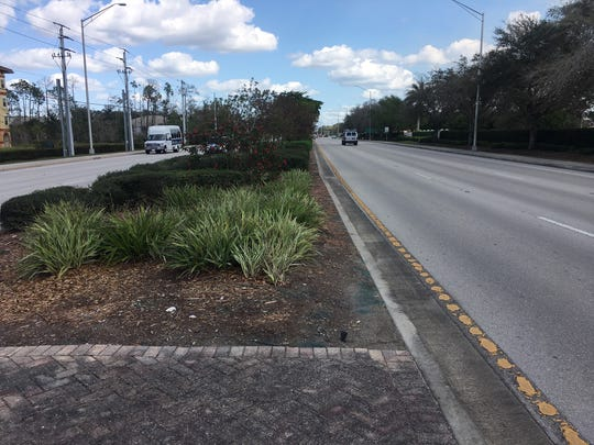Collier County's landscaped medians add an aesthetic quality to more than 100 miles of roadway. Collier County commissioners on Tuesday will be asked to pause future landscape projects and focus on maintenance.