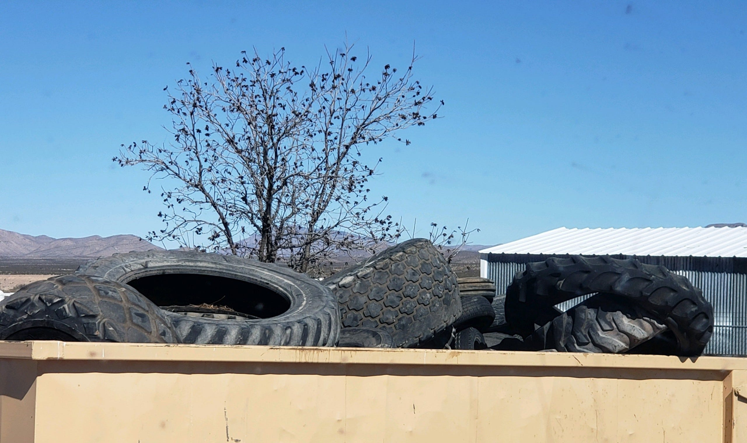 New grants help pay for tire disposal in Doña Ana County | Las Cruces Sun