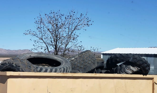Illegally-dumped tires fill a special roll-off dumpster in Hatch. The Elephant Butte Irrigation District and South Central Solid Waste Authority were granted New Mexico Environment Department funds for temporary drop-off locations in Doña Ana County.