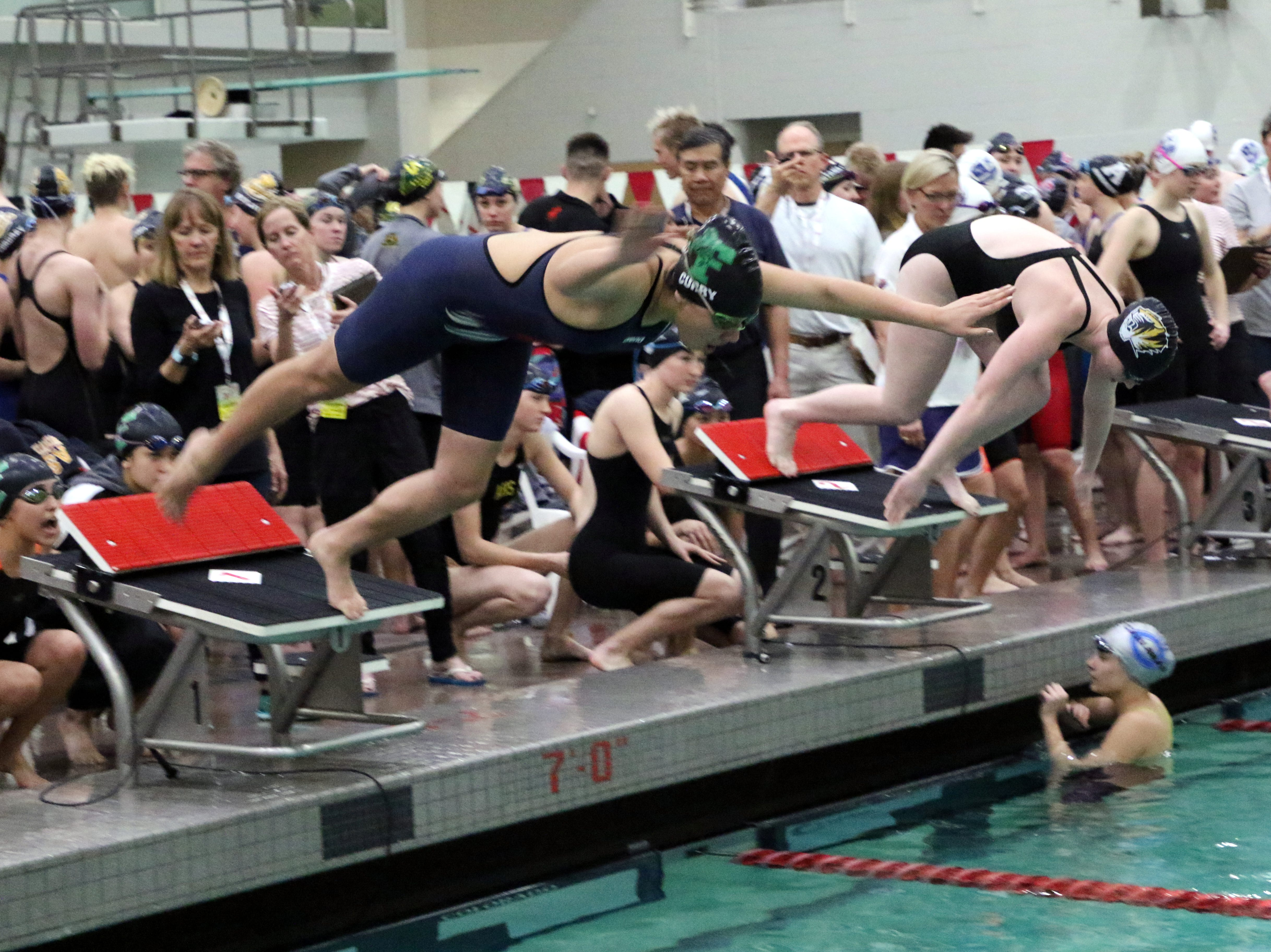 Farmington's Jadyn Curry dives off the blocks during Friday's state swimming and diving championshsips.