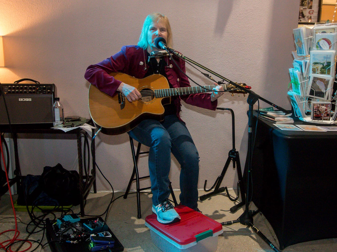 Joan Hamilton performs outside of Quayside Art Gallery during Gallery Night on Friday, February 22, 2019.