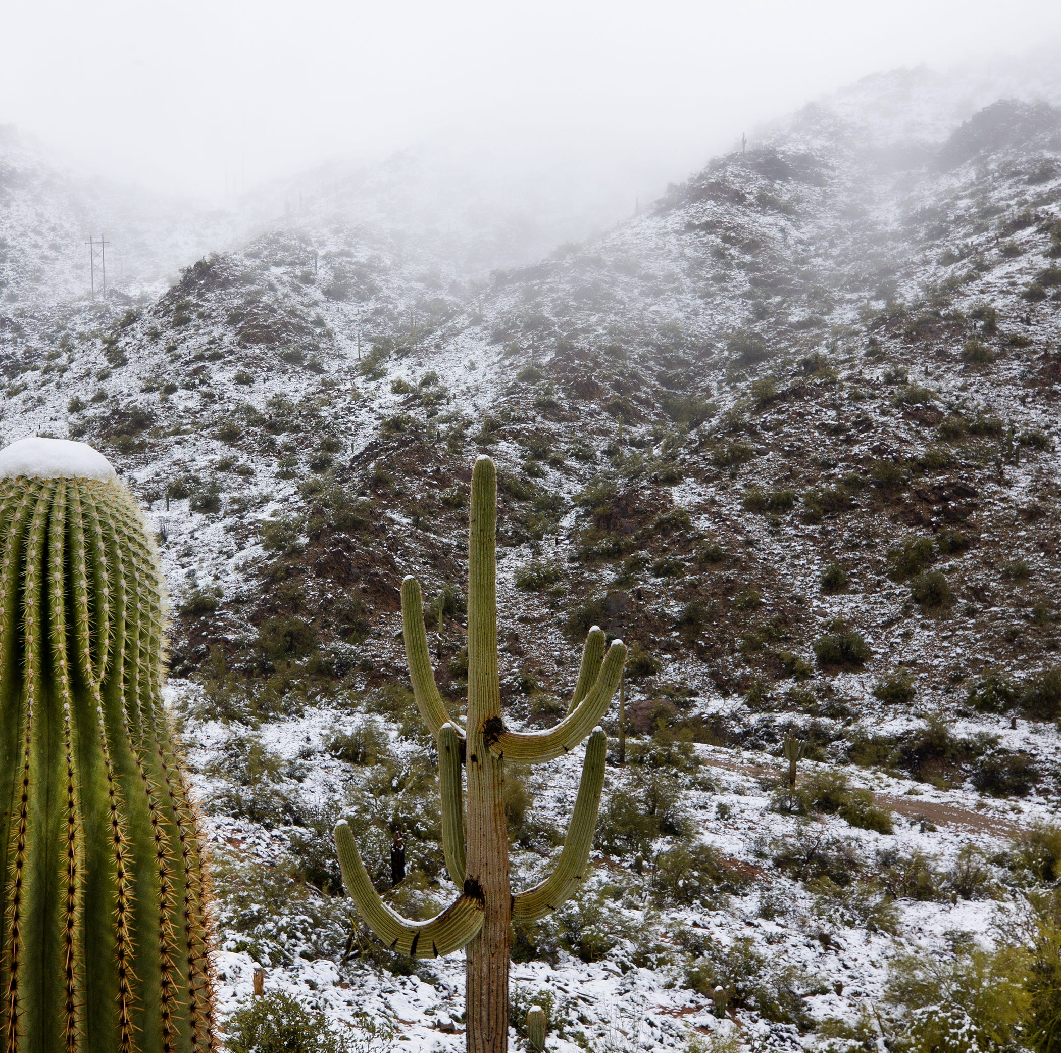 Snow from winter storms and rainfall bring a big boost to Phoenix water supply