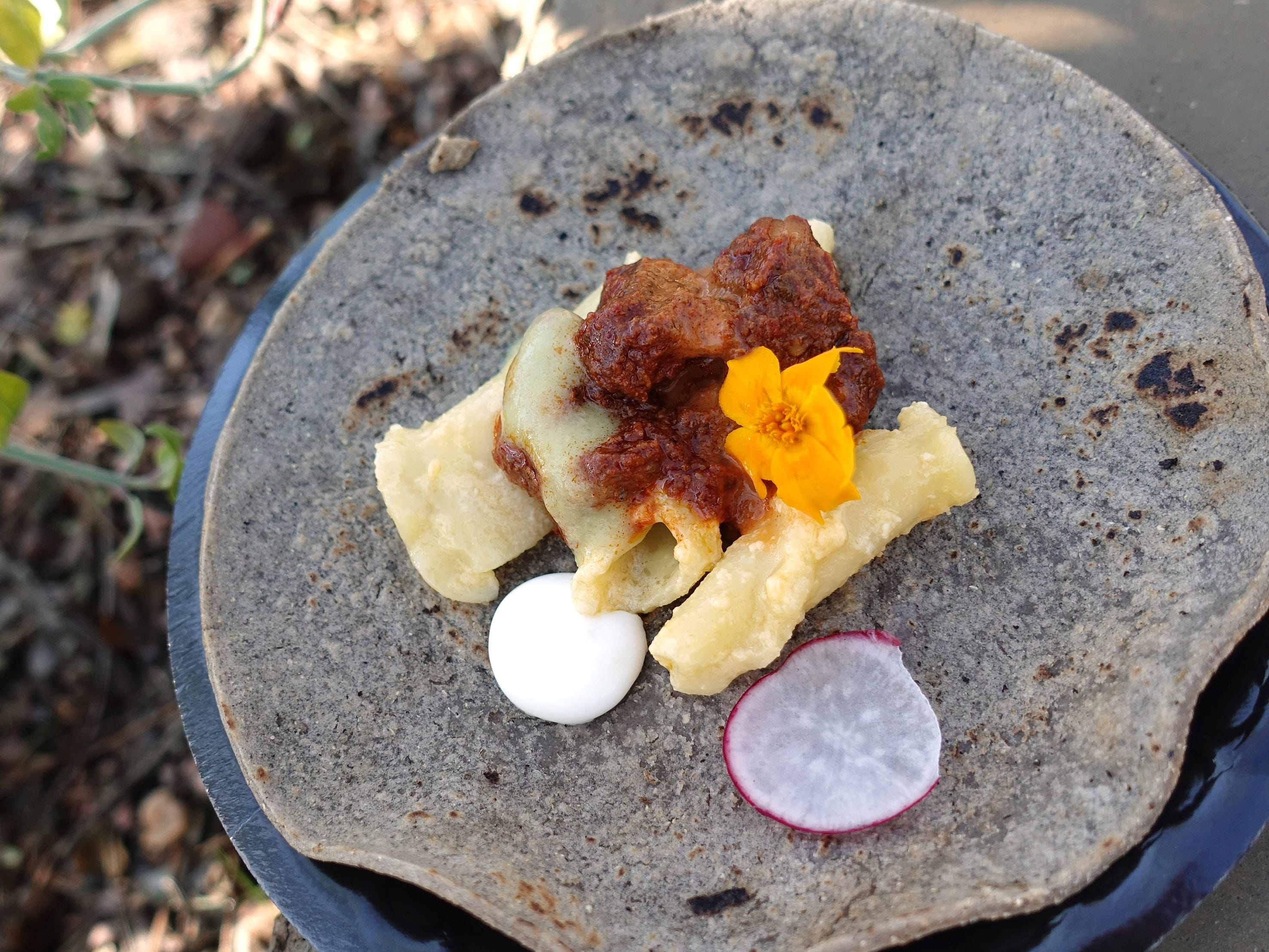 'Mac meet New Mexico' with blue corn tortilla, mac and cheese, carne adovada, romesco, lime crema, avocado and tomatillo from Social Hall at the Devour Culinary Classic at the Desert Botanical Garden in Phoenix.