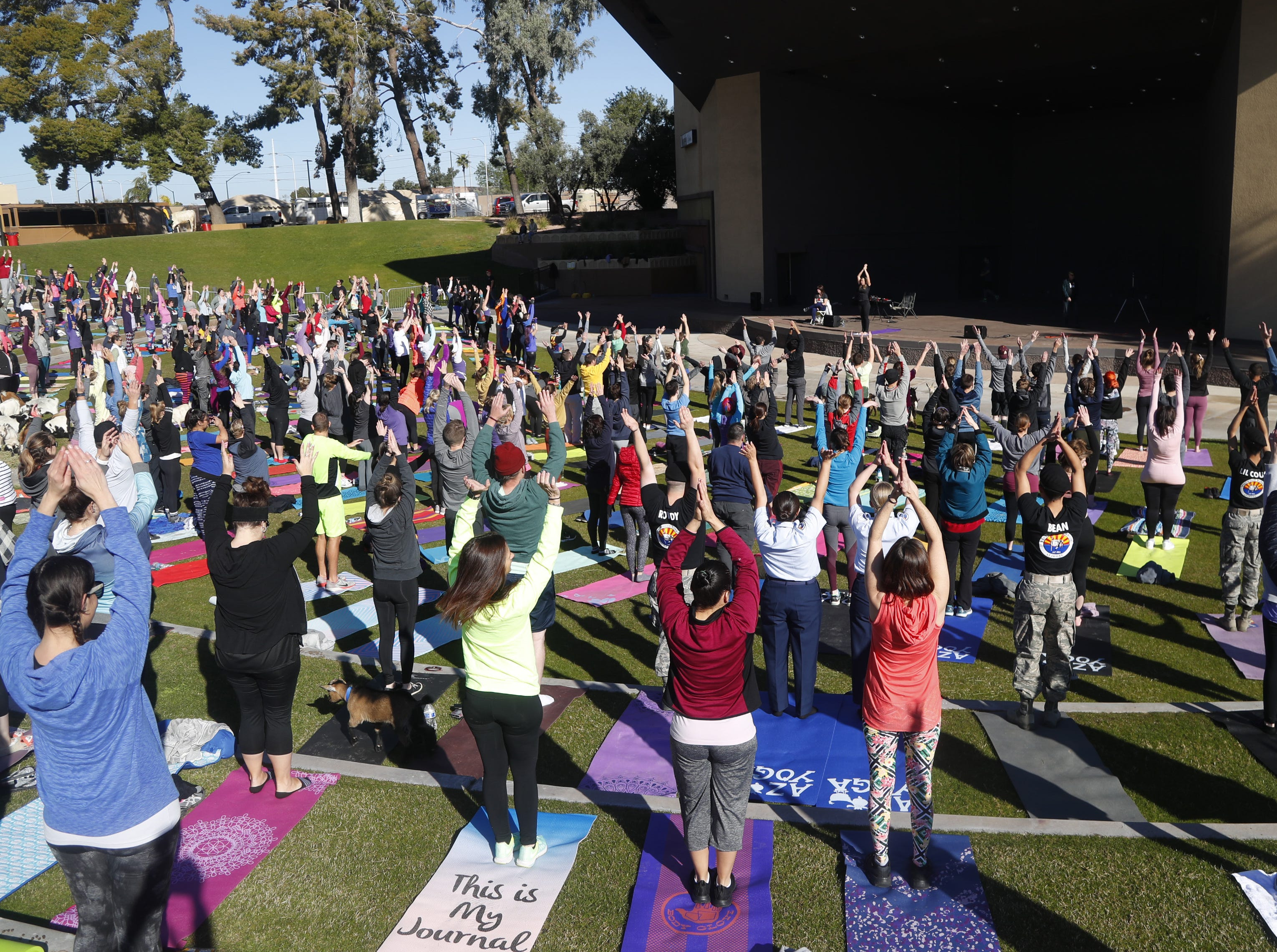 The goal was 350 people doing yoga during a Guinness World Record goat yoga attempt at the Mesa Amphitheatre in Mesa, Ariz. on Feb. 23, 2019.