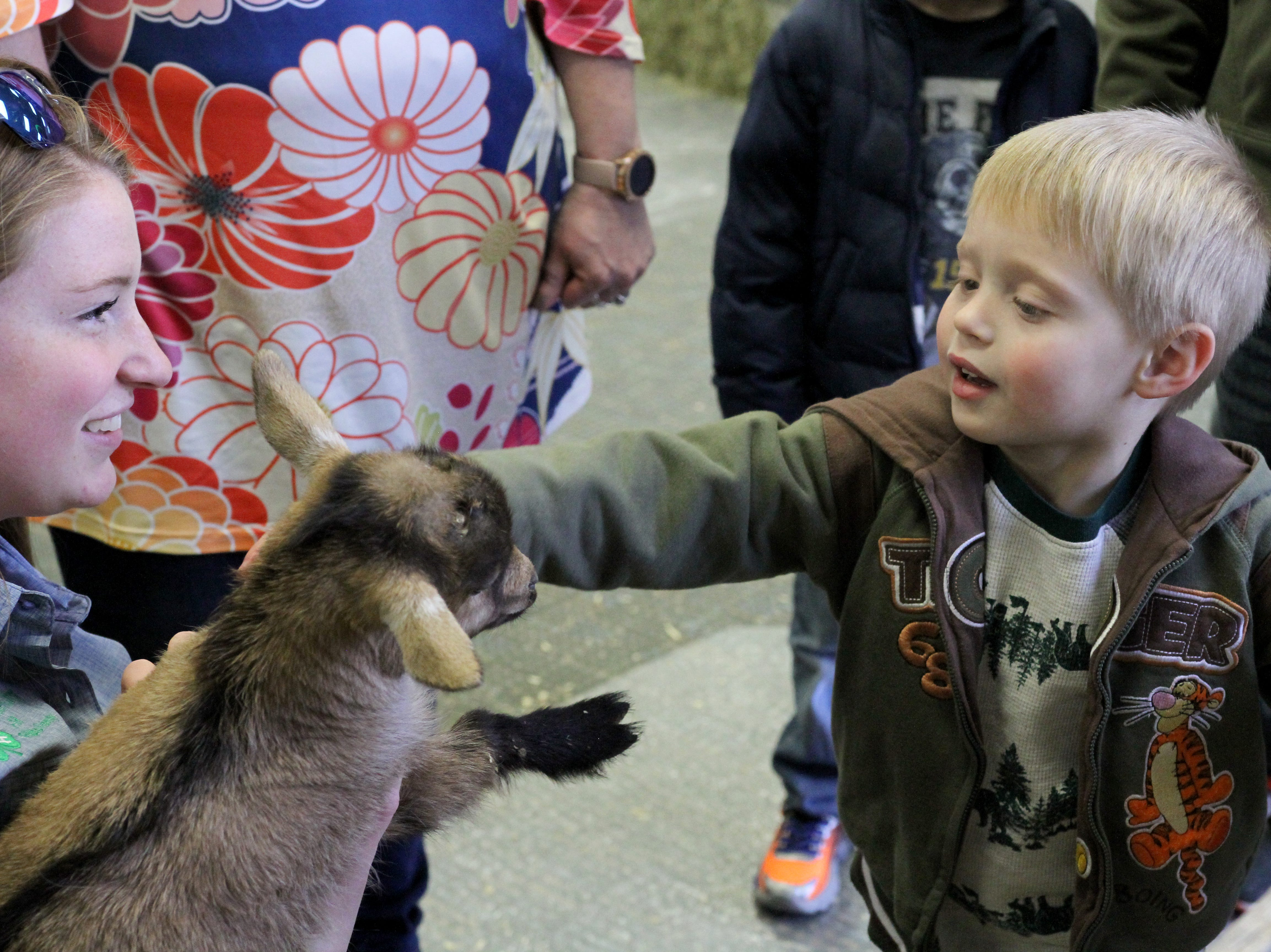 Ethan Goins pets a baby goat in the agriculture room at the Arts Alive! Home and Garden Festival Saturday, Feb. 23, 2019, in the Ray Clymer Exhibit Hall.