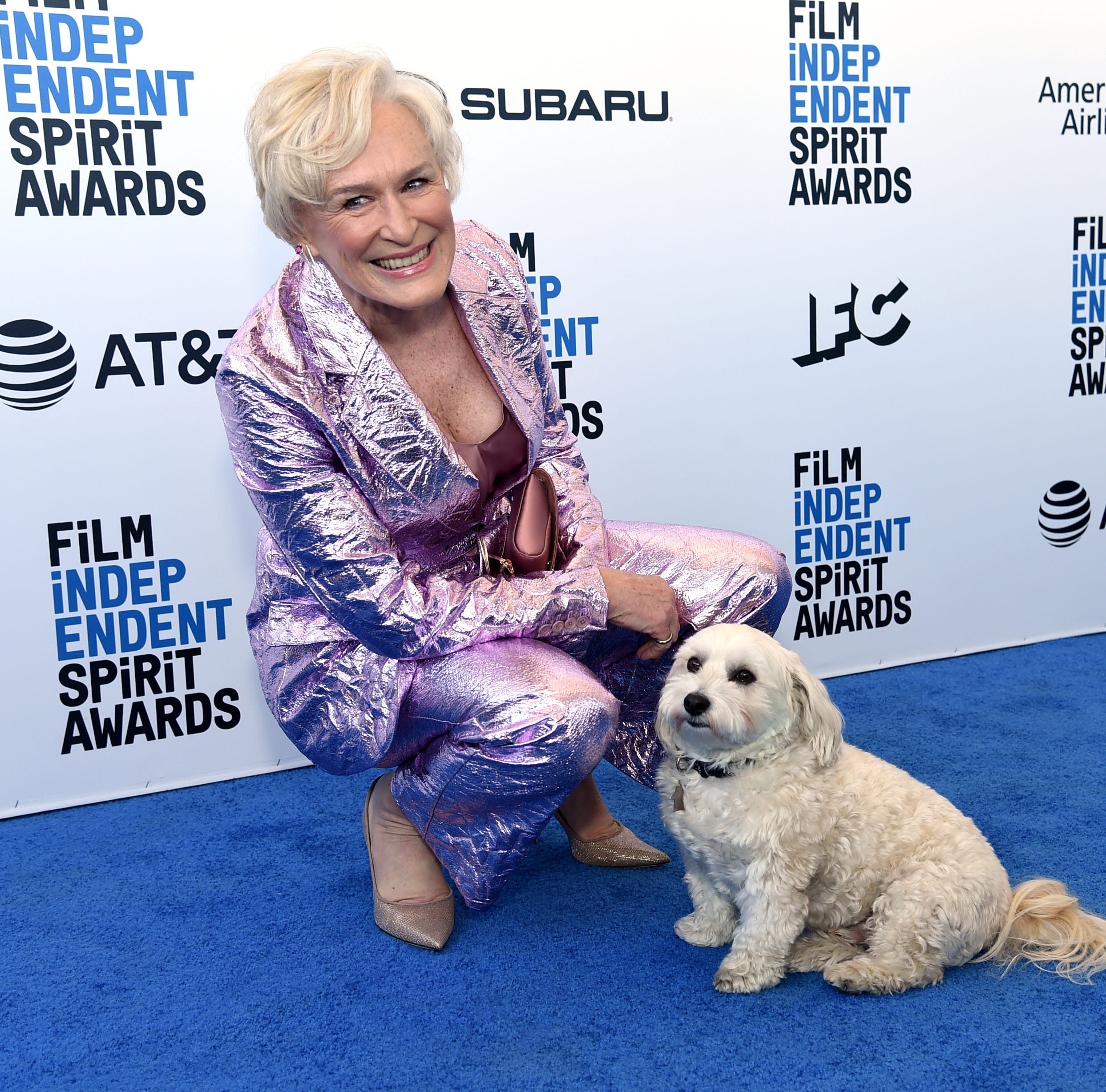 Glenn Close arrives at the 34th Film Independent Spirit Awards with her pup, Pip.