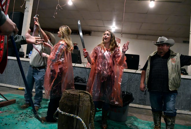 Riley Dodd reacts after successfully decapitating a rattlesnake with the first blow of a machete during Friday's Media Day for the World's Largest Rattlesnake Roundup. The annual event introduces the Big Country to Miss Snake Charmer contestants; the pageant will be March 7.
