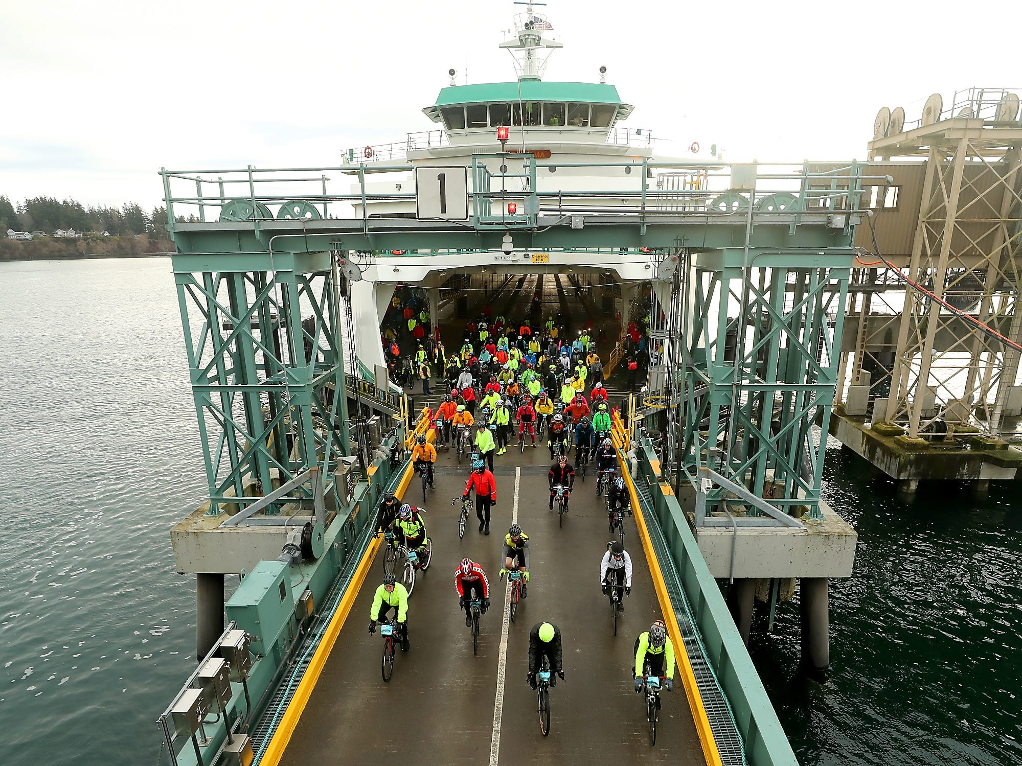 Cyclists disembark the Washington State Ferry Tacoma as they begin Cascade Bicycle Club's annual Chilly Hilly ride around Bainbridge Island on Sunday, February 24, 2019.