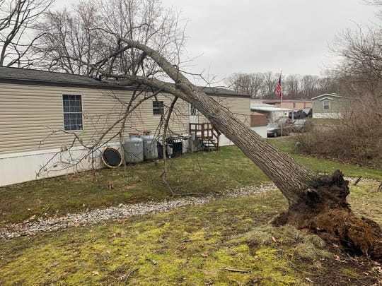 A tree fell on a home in New Miami Township in Clermont County Sunday as high winds ripped through the much of Ohio, Kentucky and Indiana.