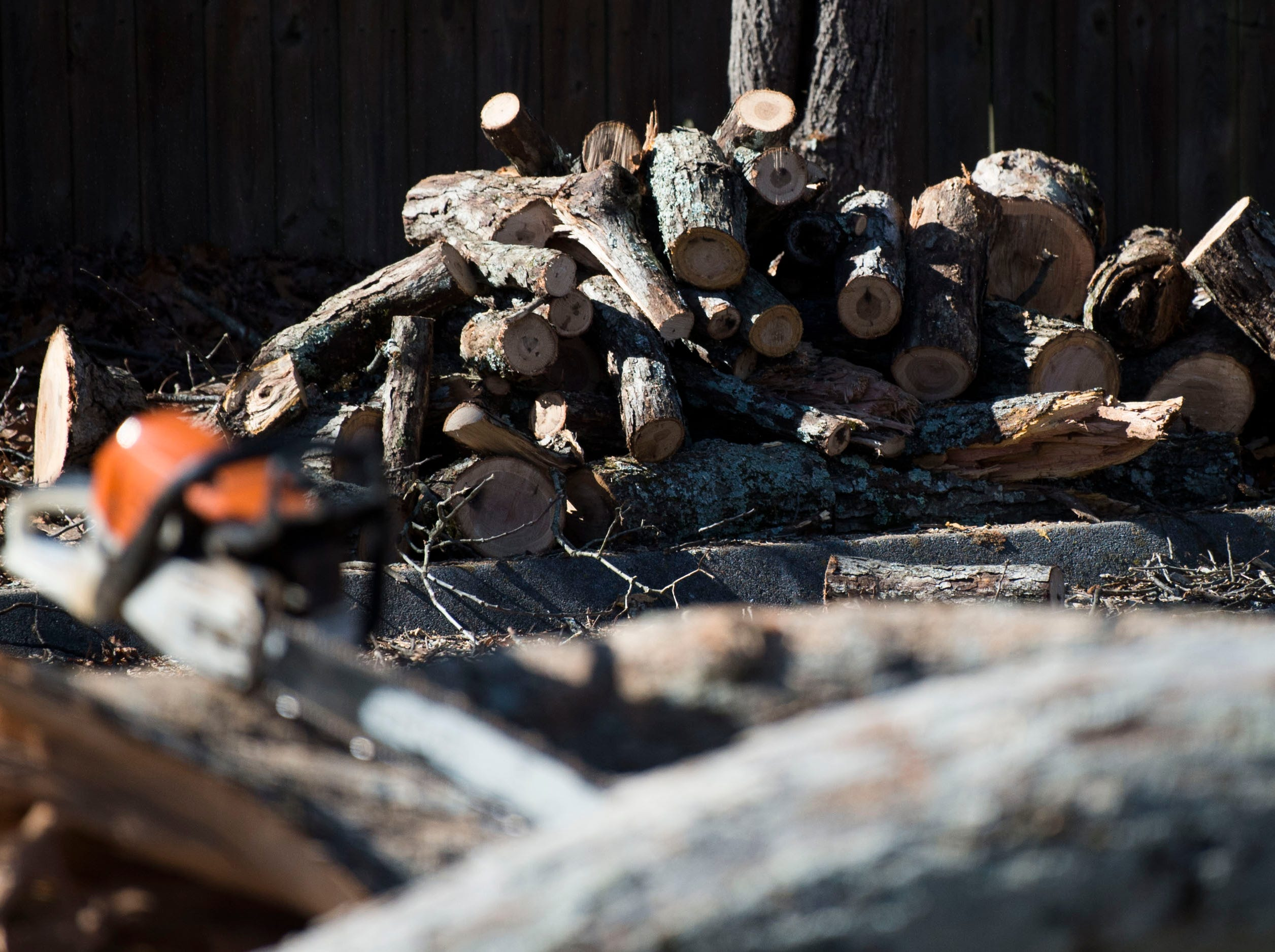 Wood is stacked from a tree which fell on cars during a church service at Fellowship Church Knoxville on Middlebrook Pike Sunday, Feb. 24, 2019. Over twenty cars were affected by the fallen tree.