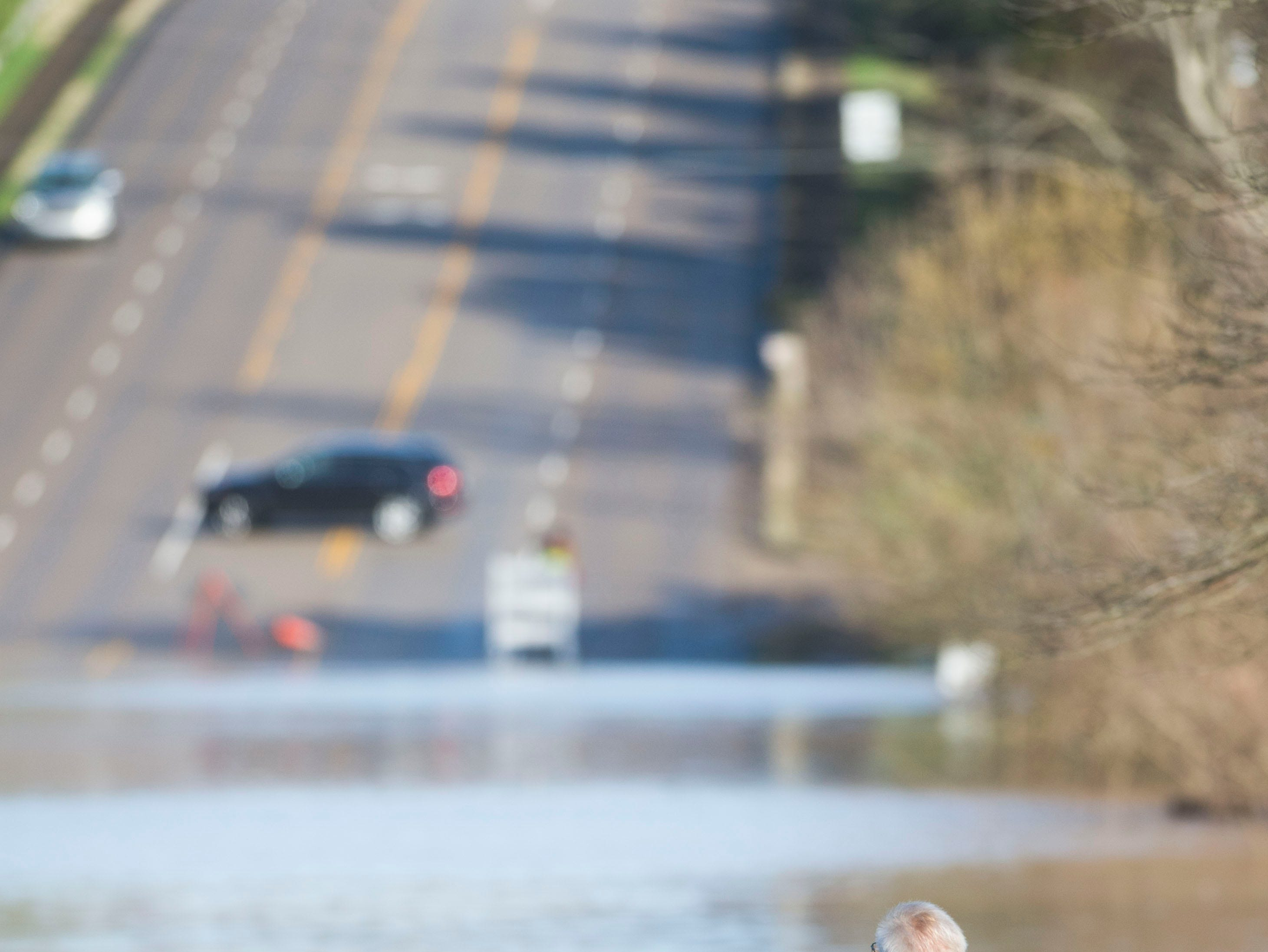 Rolf Migun, of Knoxville, observes flooding with his dog Ellie Mae, on South Peters and Ebenezer Road in West Knoxville Sunday, Feb. 24, 2019.