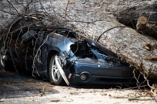 A car is damaged by a tree which fell during a church service at Fellowship Church Knoxville on Middlebrook Pike Sunday, Feb. 24, 2019. More than twenty cars were affected by the fallen tree.