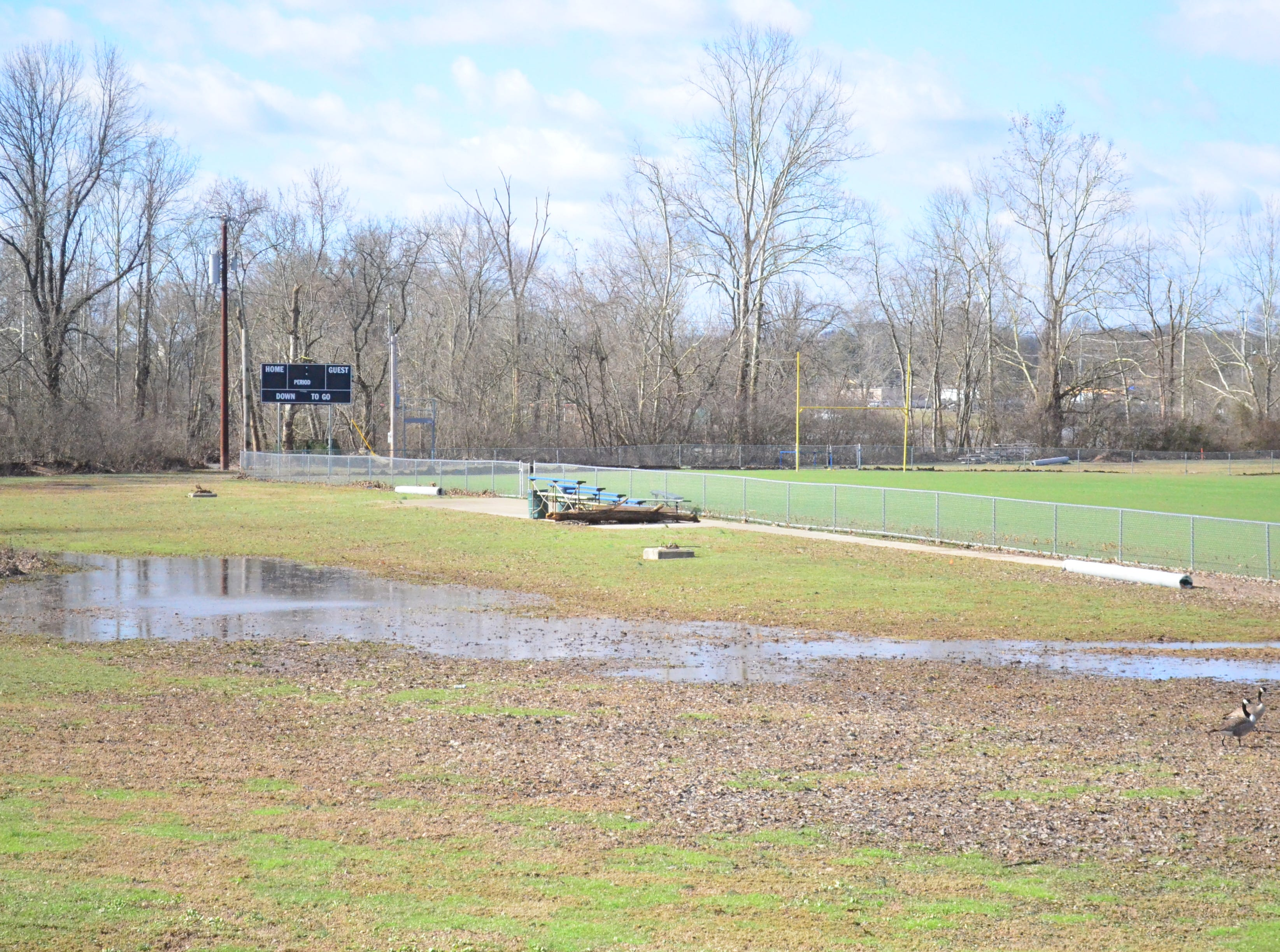 A field is flooded at Drakes Creek Park in Hendersonville Sunday, Feb. 24, 2019.