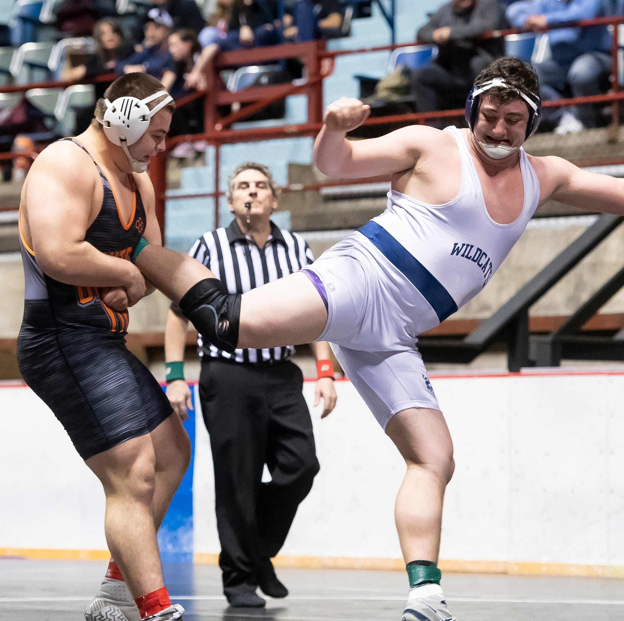 District 3 wrestling: Which GameTimePA wrestlers earned championships?