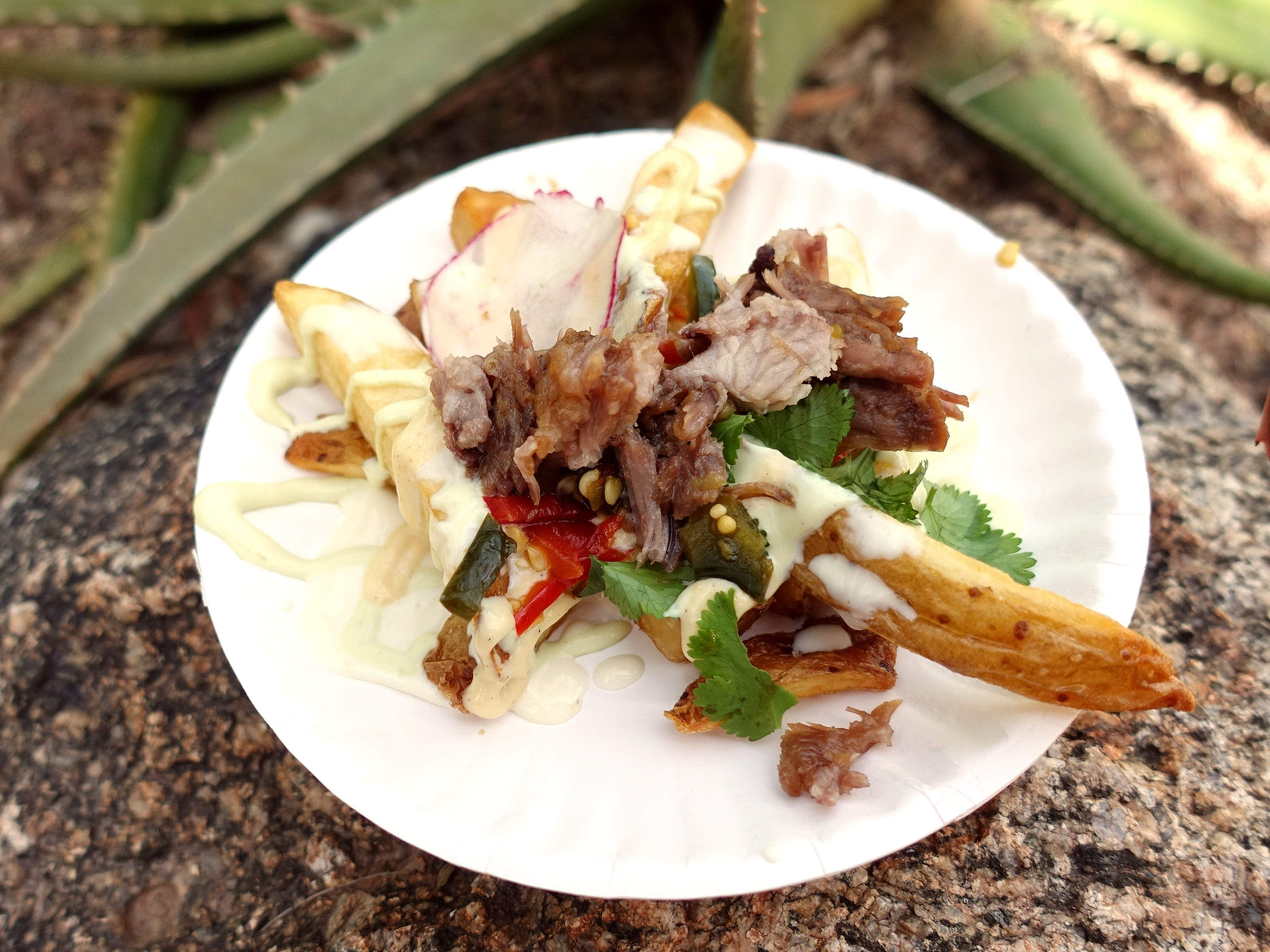 Normal fries with Frites Street fries, fermented chiles, cheese sauce and carnitas from Frites Street at the 2019 Devour Culinary Classic at the Desert Botanical Garden in Phoenix.