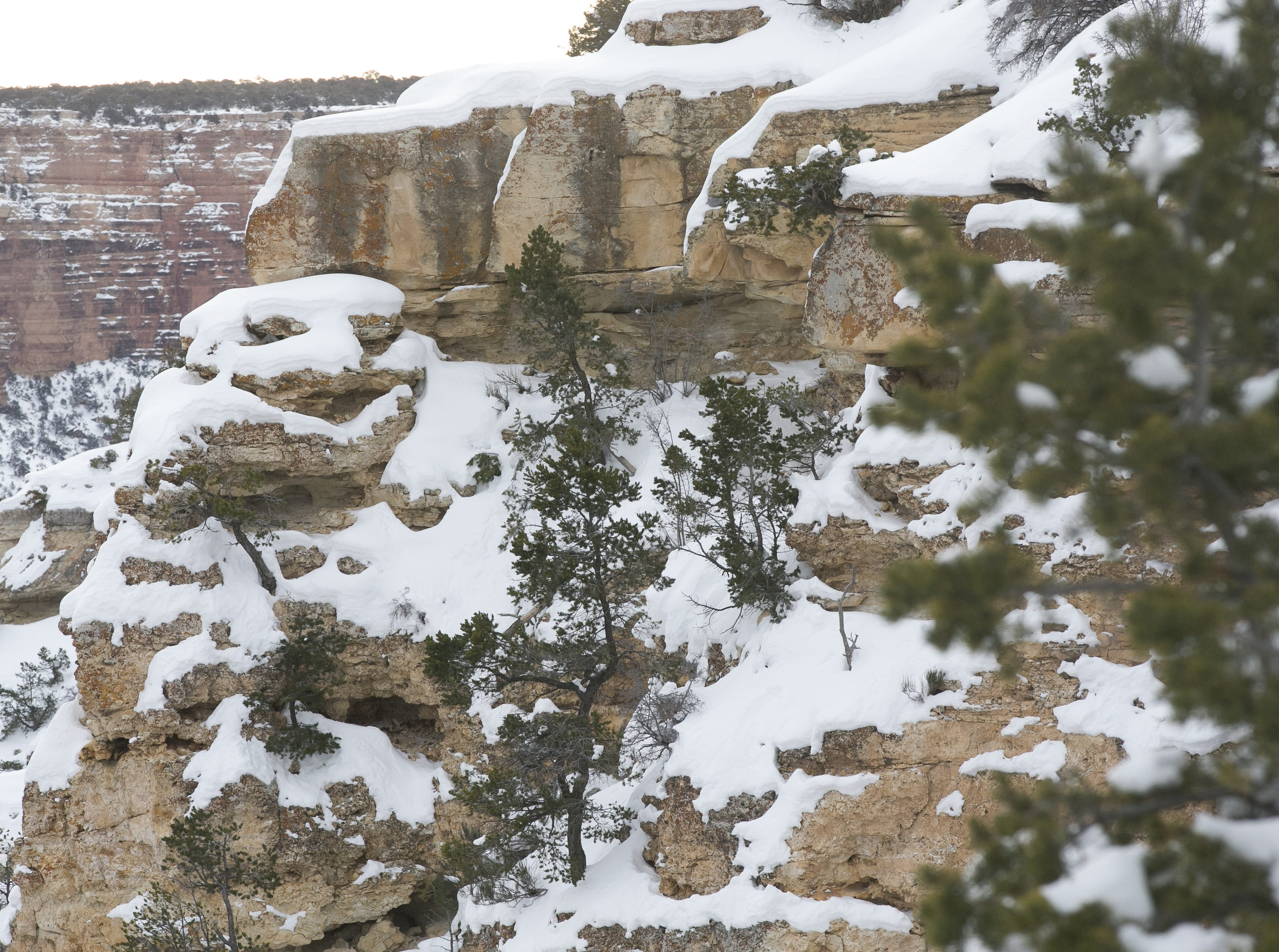 Snow rests on the Grand Canyon on Feb. 24, 2019.