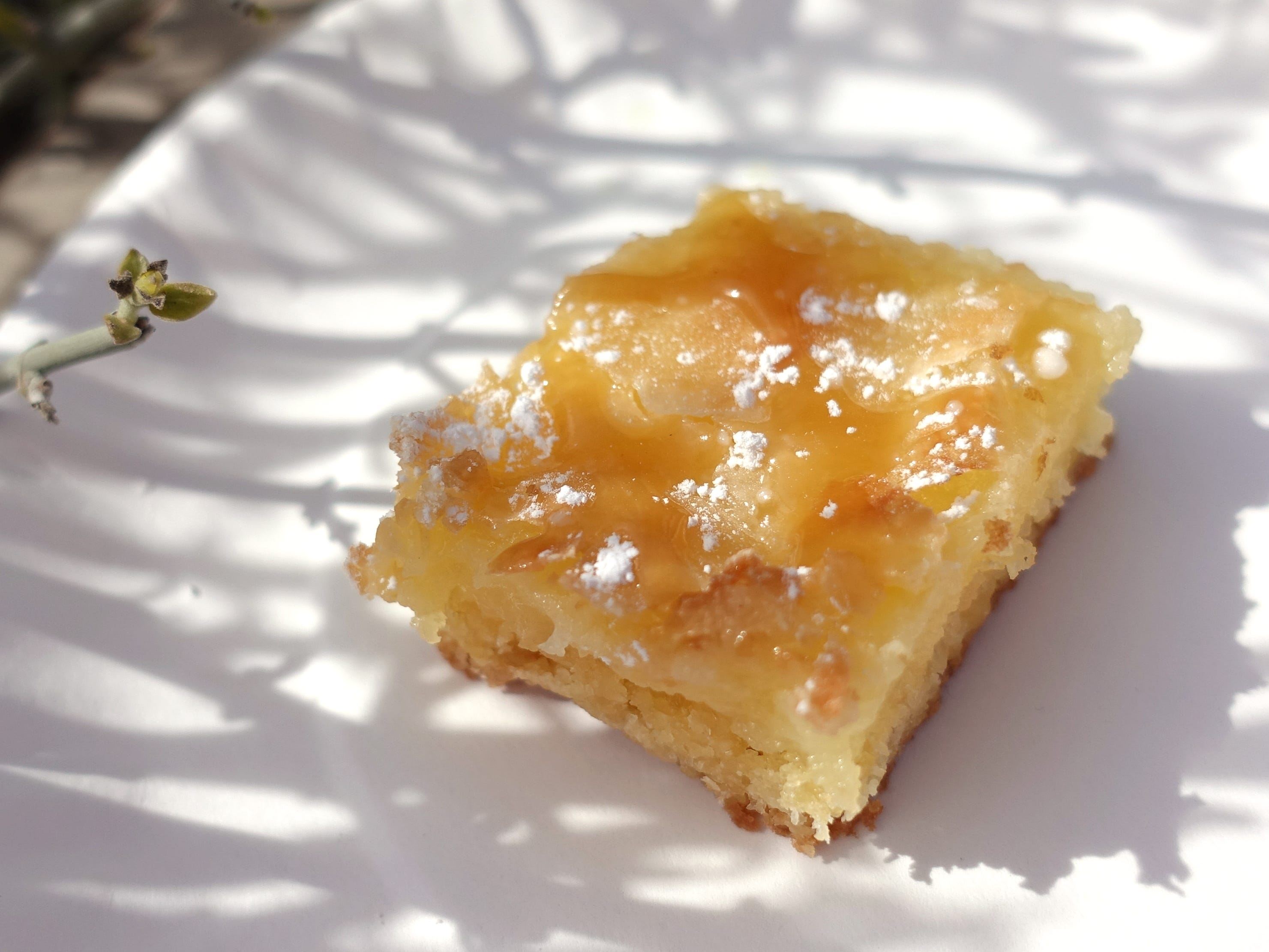 Gooey butter cake from Frasher's Smokehouse at the 2019 Devour Culinary Classic at the Desert Botanical Garden in Phoenix.
