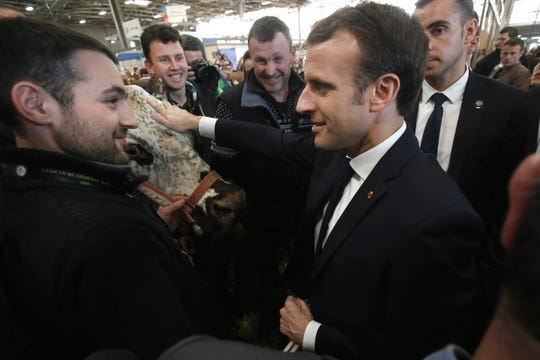 """French President Emmanuel Macron stokes a cow as he discusses with farmers while visiting the International Agriculture Fair in Paris, France, Saturday, Feb. 23, 2019. Macron pledged Saturday to protect European farming standards and culinary traditions threatened by aggressive foreign trade practices that see food as a """"product like any other."""""""