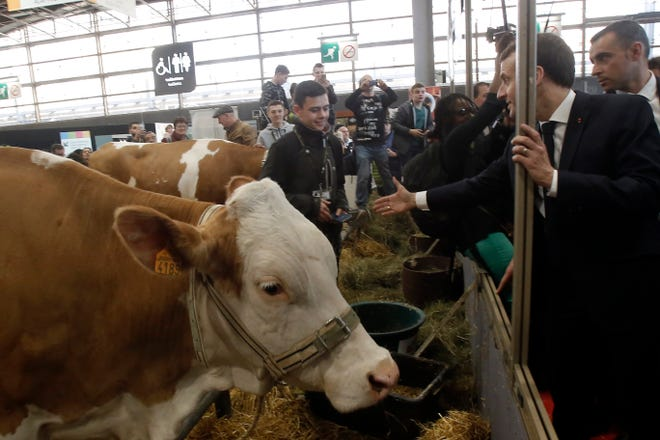 "France's President Emmanuel Macron, right, visits the International Agriculture Fair in Paris, France, Saturday, Feb. 23, 2019. Macron pledged Saturday to protect European farming standards and culinary traditions threatened by aggressive foreign trade practices that see food as a ""product like any other."""