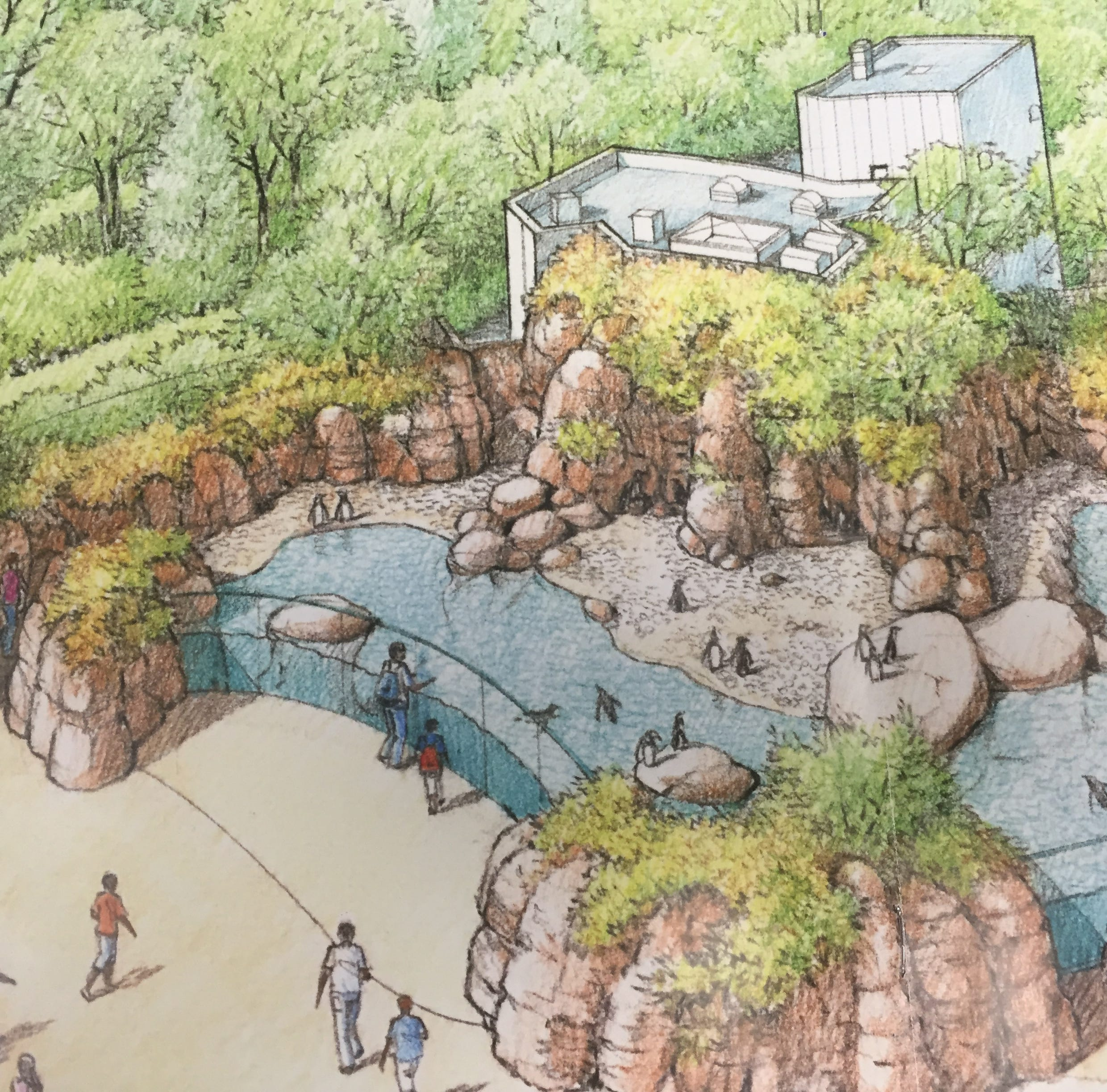 Penguin exhibit at Mesker Park Zoo on road to construction with CVB approving funds