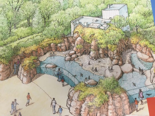 A rendering of Penguins of Patagonia, the Humboldt penguin exhibit planned at Mesker Park Zoo & Botanic Garden.