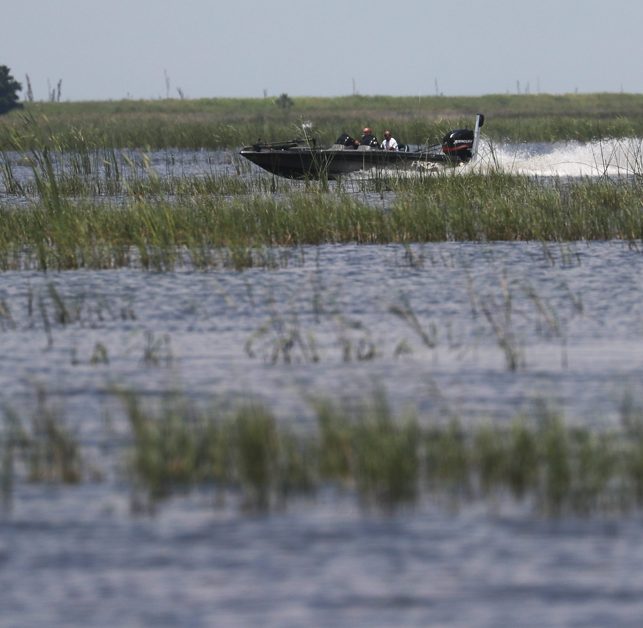 Federal water managers say another blue-green algae bloom on Okeechobee likely