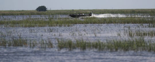 A boater plows through Lake Okeechobee during the algae bloom of 2018. U.S. Army Corps of Engineers officials say they expect another blue-green algae bloom on the lake this year.
