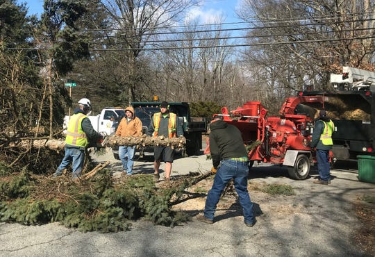A tree crew battle wind whipping through a toppled pine tree off Konner Avenue in Montville February 25, 2019.