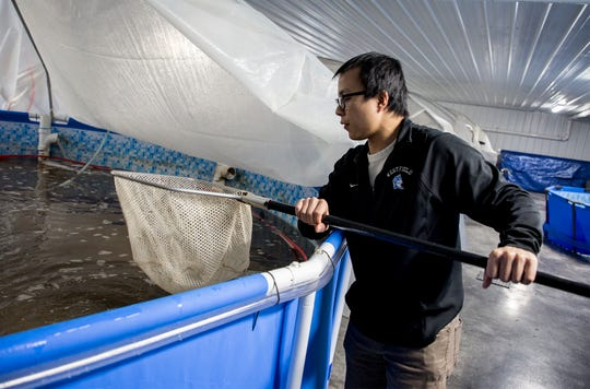 "Ashtyn R. Chen, CEO/Biochemical engineer, expanded his shrimp and sea food raising enterprise, ""The Ocean's Friend Aquaculture, LLC"" operation to Pataskala."