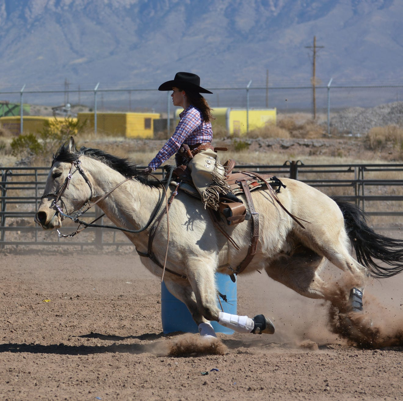Saddle up for the NM Farm & Ranch Museum's 20th Cowboy Days