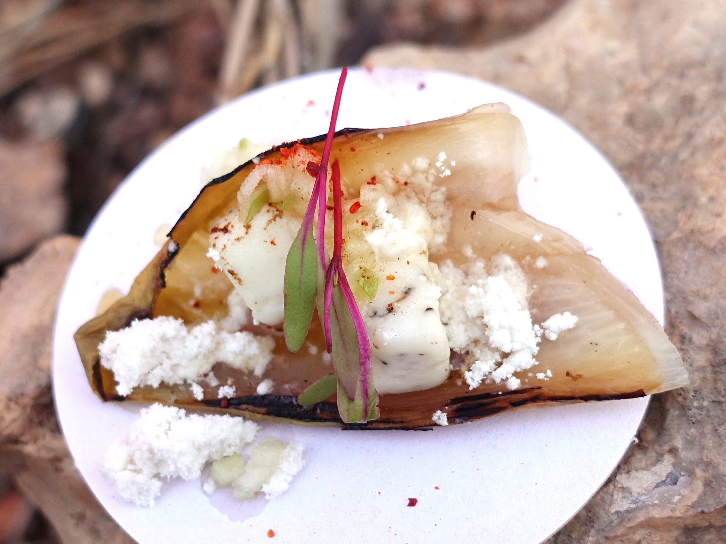 Peppercorn 'semi-frico' with Crow's Dairy peppercorn feta, endive, espelette, charred lemon honey, olive oil powder and green apple from The Dressing Room at the 2019 Devour Culinary Classic at the Desert Botanical Garden in Phoenix.