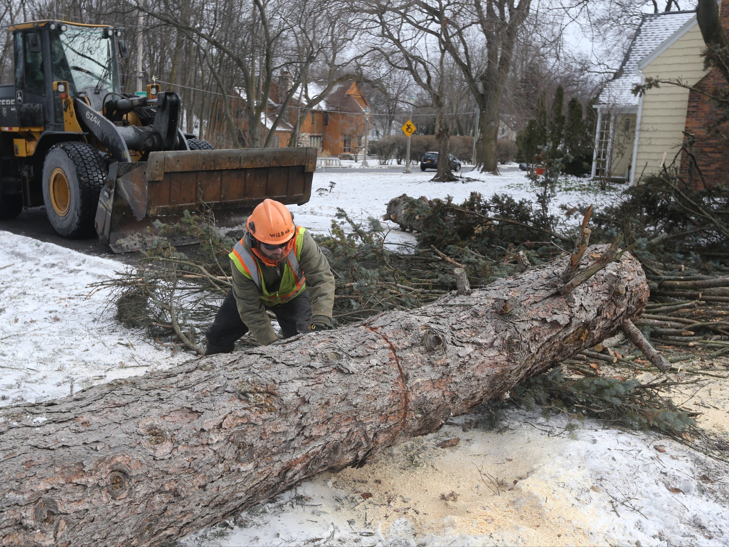 Crews work to cut up tree that fell on Continental Drive in Brighton