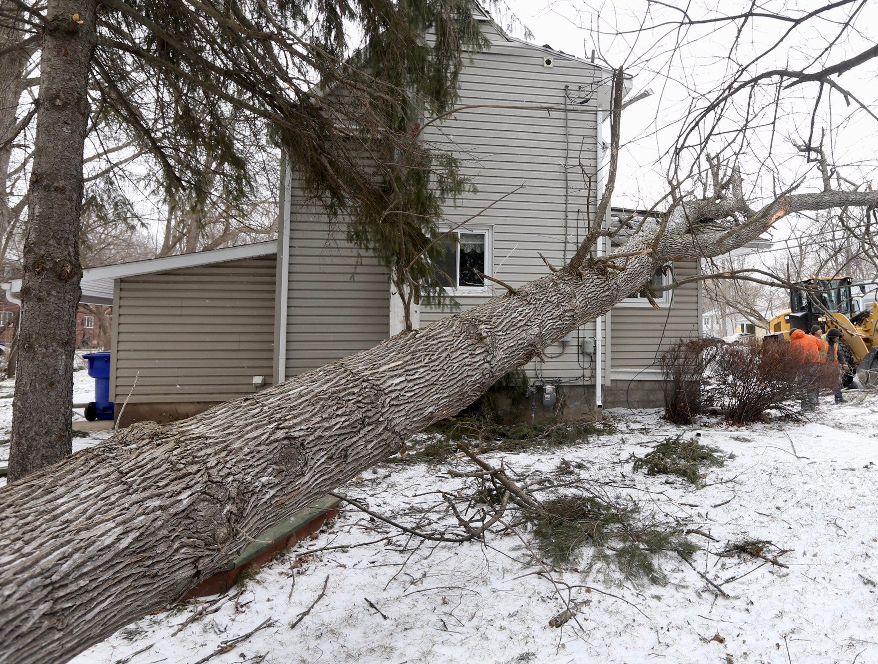 Workers clean up after this tree fell in Brockport.
