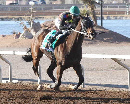 Hustle Up won the Mine That Bird Derby on Sunday, Feb. 24, 2019, at Sunland Park Racetrack & Casino. The Mine That Bird Derby is a prep race for the Sunland Derby in March.