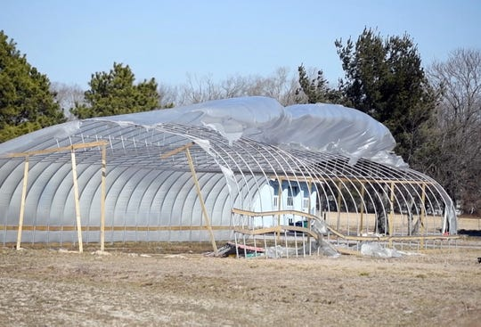 Strong gusts of wind blew the plastic off this greenhouse in Vineland on Monday, Feb. 25, 2019.