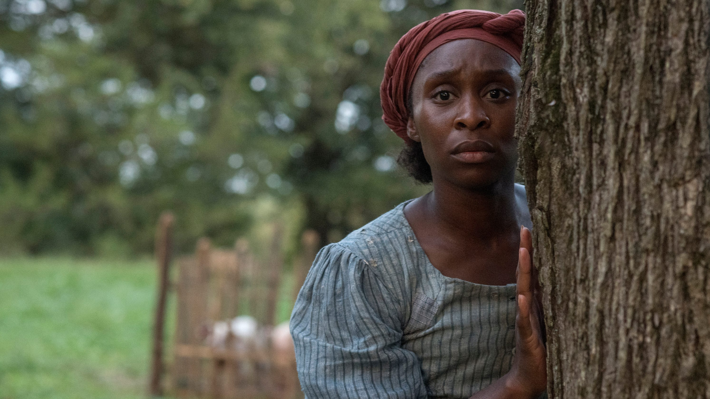 'Harriet' fact-check: How accurate is the new movie about Harriet Tubman?
