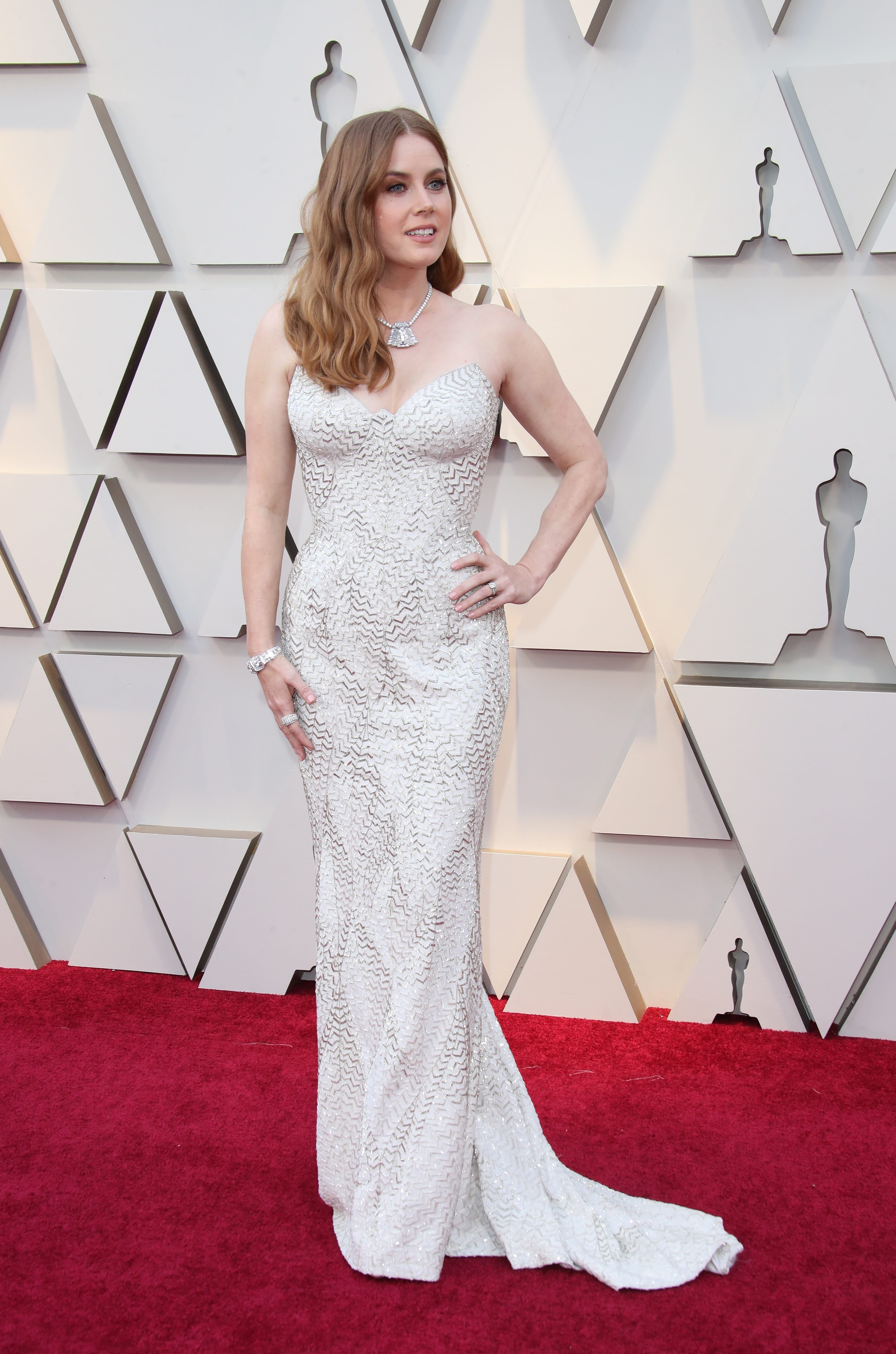 February 24, 2019; Los Angeles, CA, USA; Amy Adams arrives at the 91st Academy Awards at the Dolby Theatre. Mandatory Credit: Dan MacMedan-USA TODAY NETWORK (Via OlyDrop)