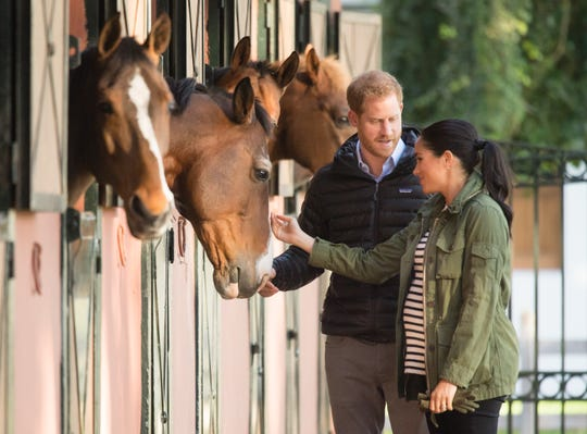 Harry and Meghan stroke the muzzle of one of the horses at the Royal Federation of Equestrian Sports stable in the capital city of Rabat Monday during their tour of Morocco, where they learned about an equine therapy program for special-needs children.