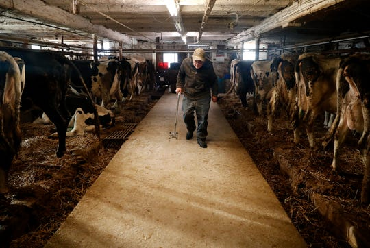 John Rieckmann, 79, walks into his barn to start morning chores Wednesday Feb. 13, 2019, in Fremont, Wis.