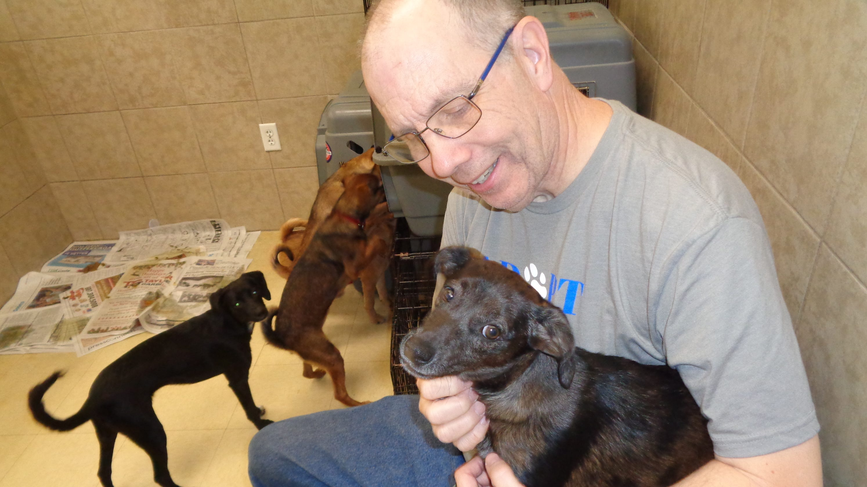 Binghamton couple rescue and foster pets with Every Dog's Dream