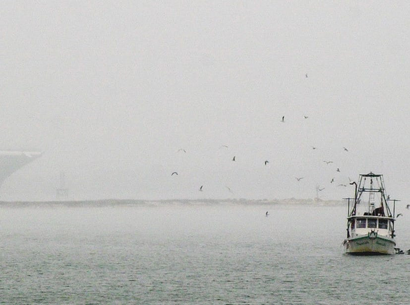 A shrimp boat, working in the waters just off the bayfront, with the Texas State Aquarium and Harbor Bridge barrly visible through the morning fog on Dec. 13, 2000. The boat is the Wayward Lady