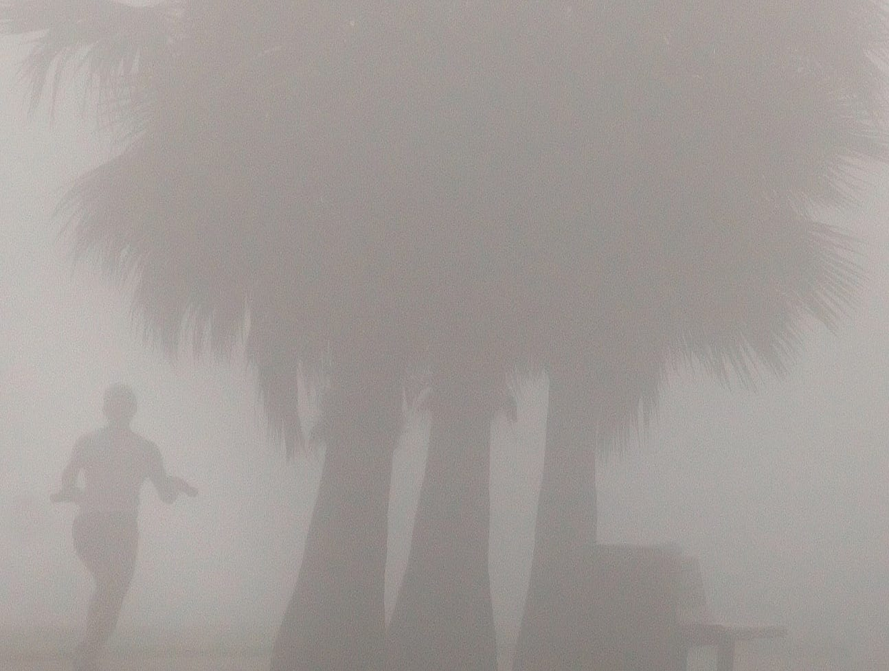 Linda Garza takes a early morning jog down Ocean Drive as heavy fog rolling in from the Corpus Christi Bay Sunday, January 29, 2006 blanketing the Corpus Christi area .