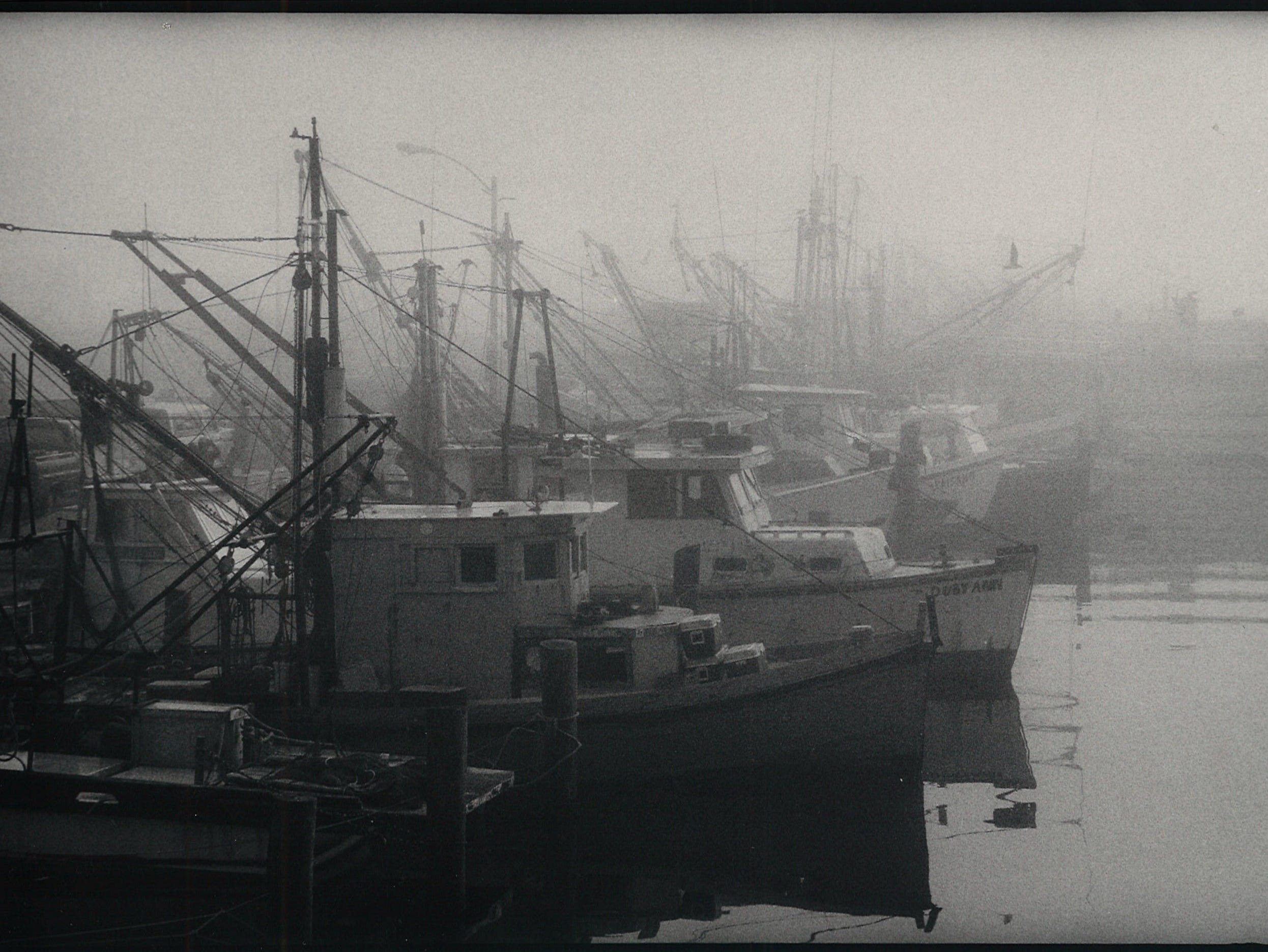 Shrimp boats at the fog-encased Peoples Street T-head in Corpus Christi on Nov. 18, 1986.