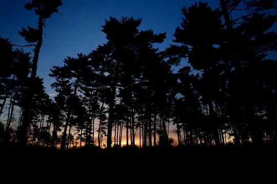 The sunrise is seen through trees at the Winton Woods campground about 7:30 a.m. Tuesday.