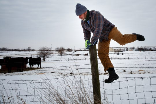 Dan Hanrahan climbs over a barbed wire fence to bring in cattle who wouldn't leave a feeder during his morning chores on Tuesday, Feb. 26, 2019 in Cumming. Hanrahan said he keeps shelters open for cattle in the colder weather and uses a more nutritious hay to help them get through the cold nights and calving season.