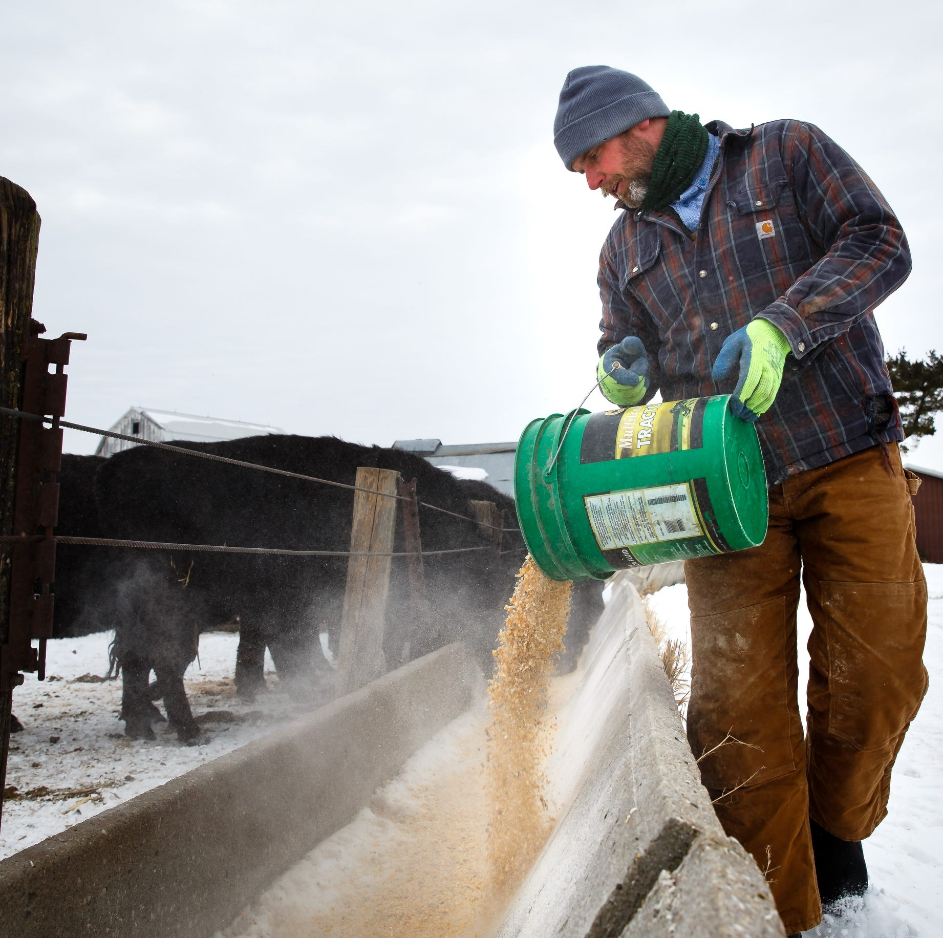 Iowa farmers battle bitter cold, 15-foot snow drifts to care for animals