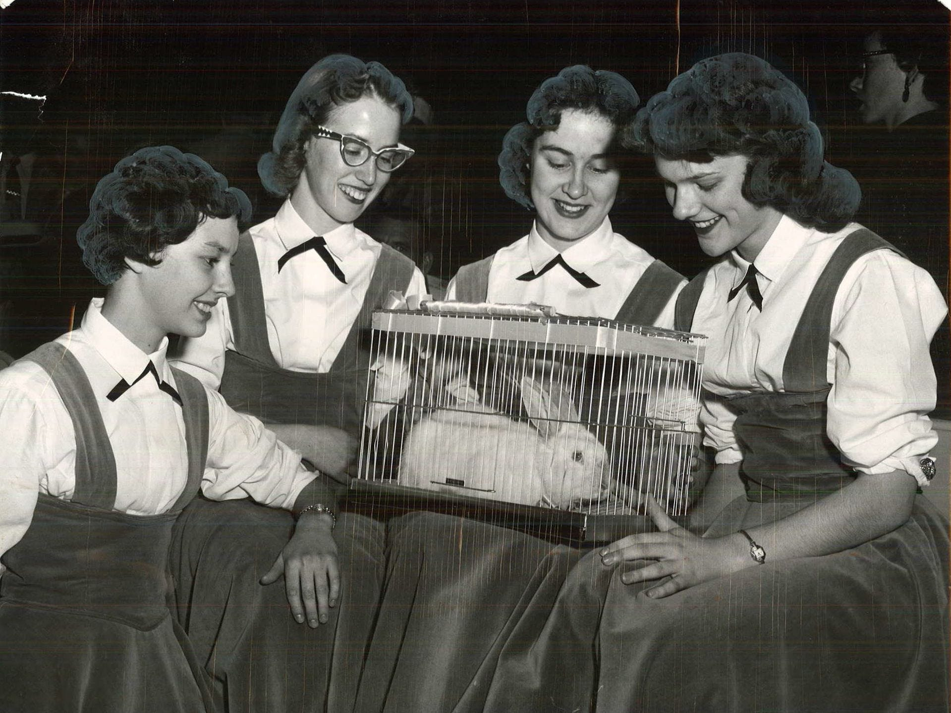 1956: Oakland cheerleaders, from left, Judy Spencer, Ann Perley, Emilie Gardner and Norma Renaud brought a rabbit named Lucky to a tournament game. Register file photo