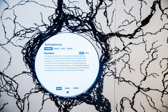 A wall in the the Science Center of Iowa's special exhibition Mental Health: Mind Matters shows information about mental illnesses on Monday, Feb. 26, 2019, in Des Moines.