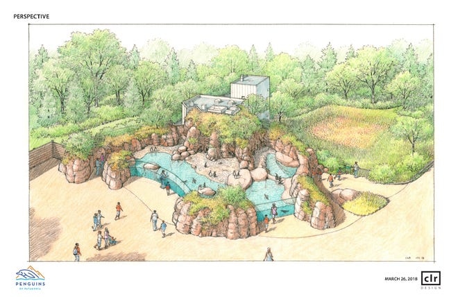 Rendering of the Penguins of Patagonia exhibit planned for Mesker Park Zoo & Botanic Garden.